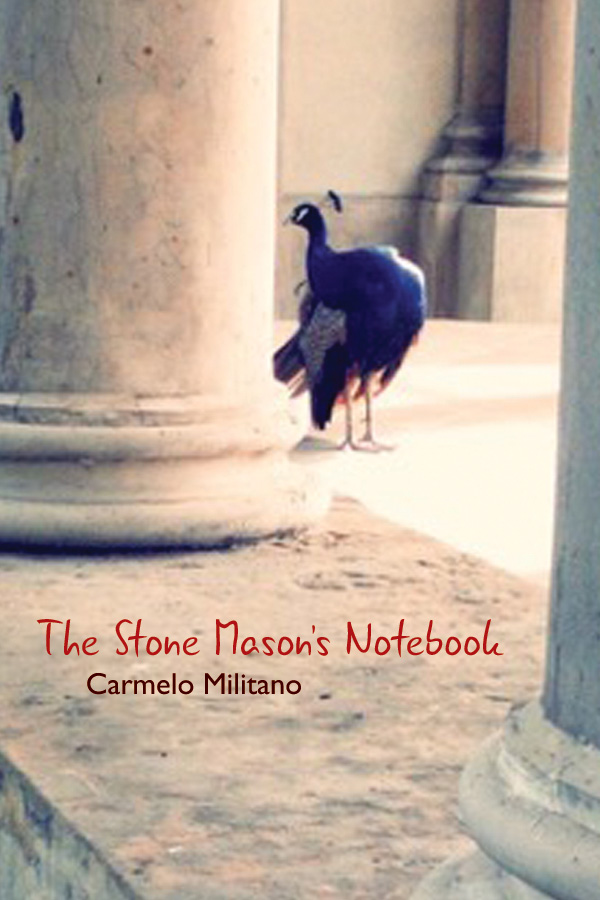 REVIEW: THE STONE MASON'S NOTEBOOK   BY CARMELO MILITANO